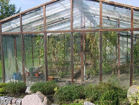 mini gew chshaus treibhaus f r tomaten gurken pflanzen billig selber bauen aus glas holz alu. Black Bedroom Furniture Sets. Home Design Ideas