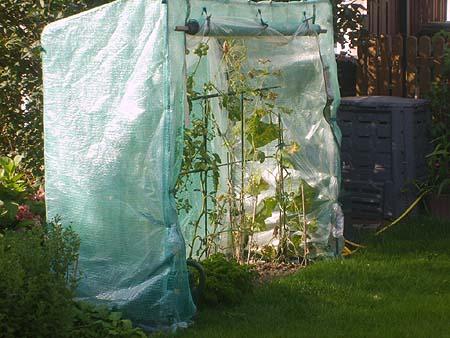 Mini Gewachshaus Treibhaus Fur Tomaten Gurken Pflanzen Billig