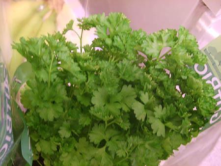 petersilie-garten-pflanzen-tipps