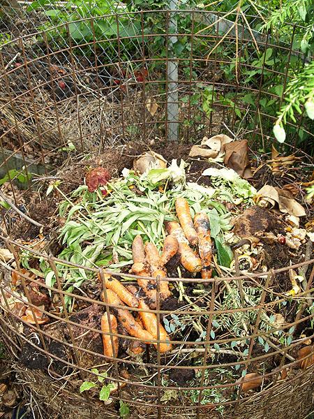 richtig-duengen-kompost